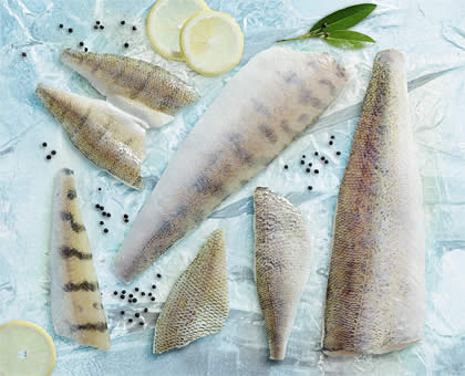 Pike Perch, Zander, Lake Perch Fillets, Wild caught North American Walleye, Yellow Perch, Bluegill, and Crappie Fillets